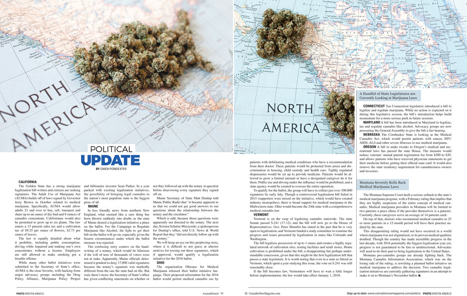 Cannabis Now, Issue 20