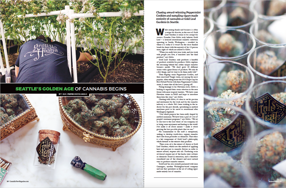 Cannabis Now, Issue 21