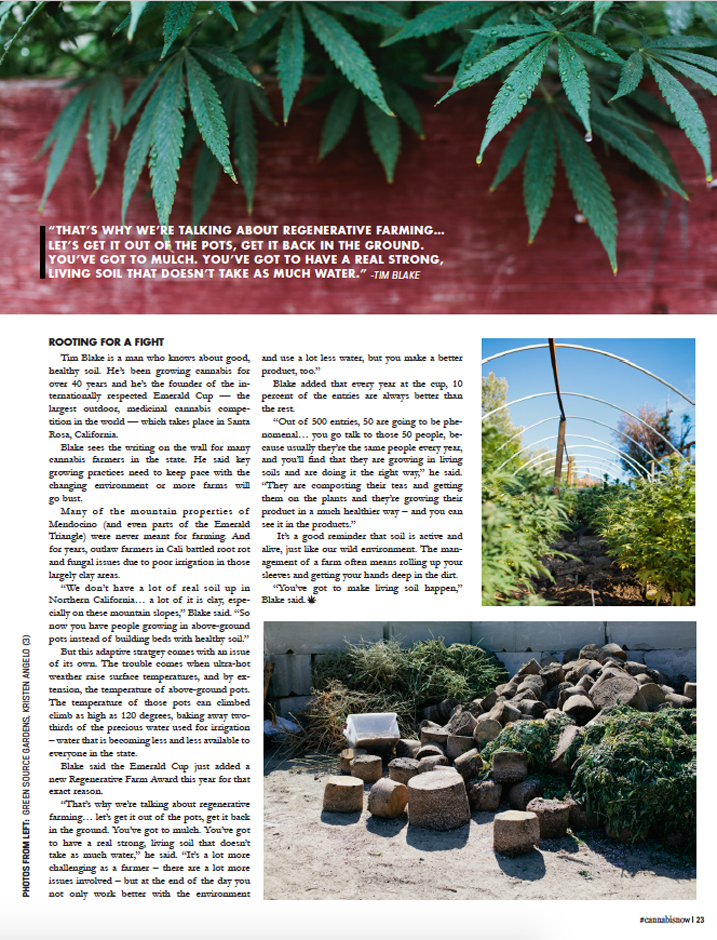 Cannabis Now, Issue 24