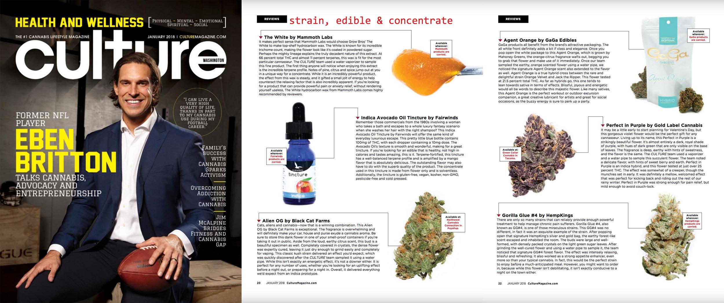 Culture Magazine, January 2018