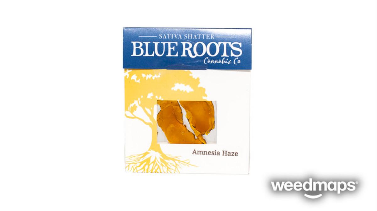 blue-roots-cannabis-amnesia-haze-1.jpg