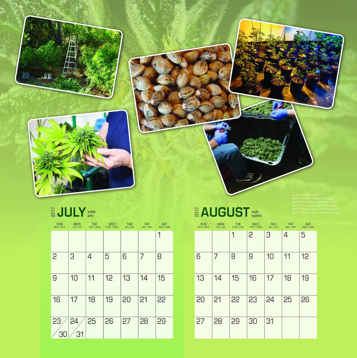 jorge-cervantes-cannabis-calendar.jpg