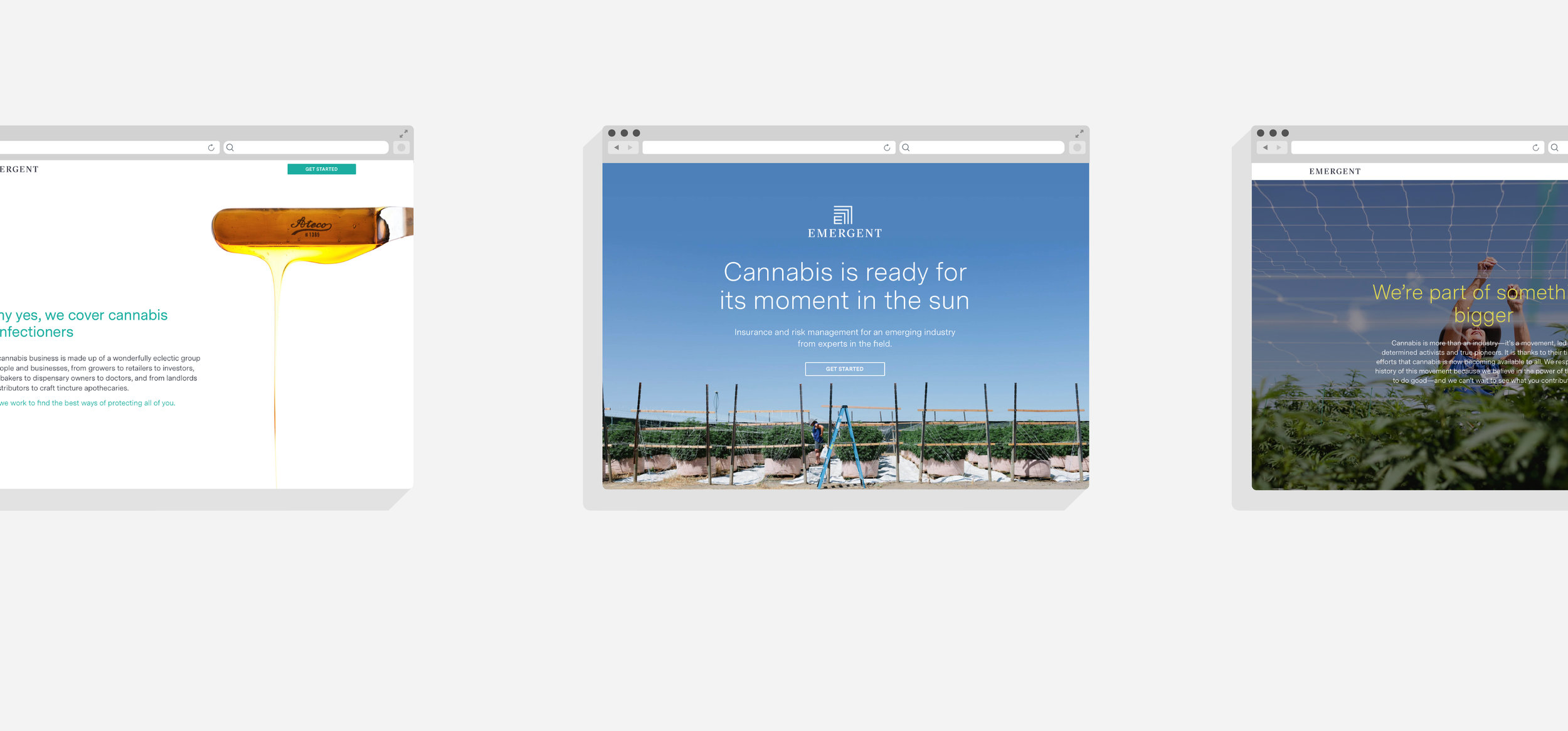 cannabis-insurance-california.jpeg
