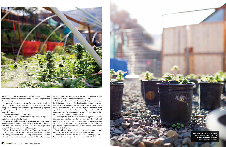 Marijuana Venture, June 2018