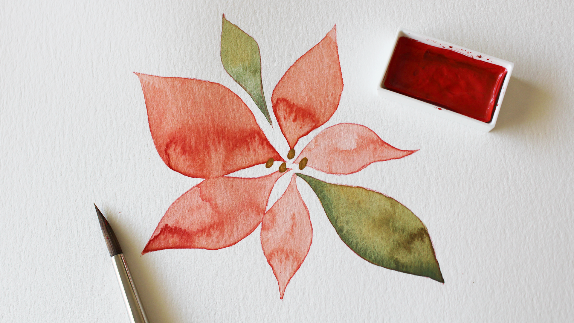 poinsettia_result.png