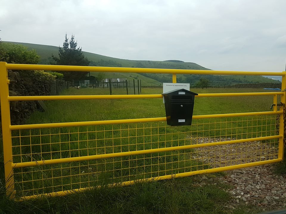 Animal Behaviour Coach yellow gate is easy to find on the A624. Entrance by appointment only.