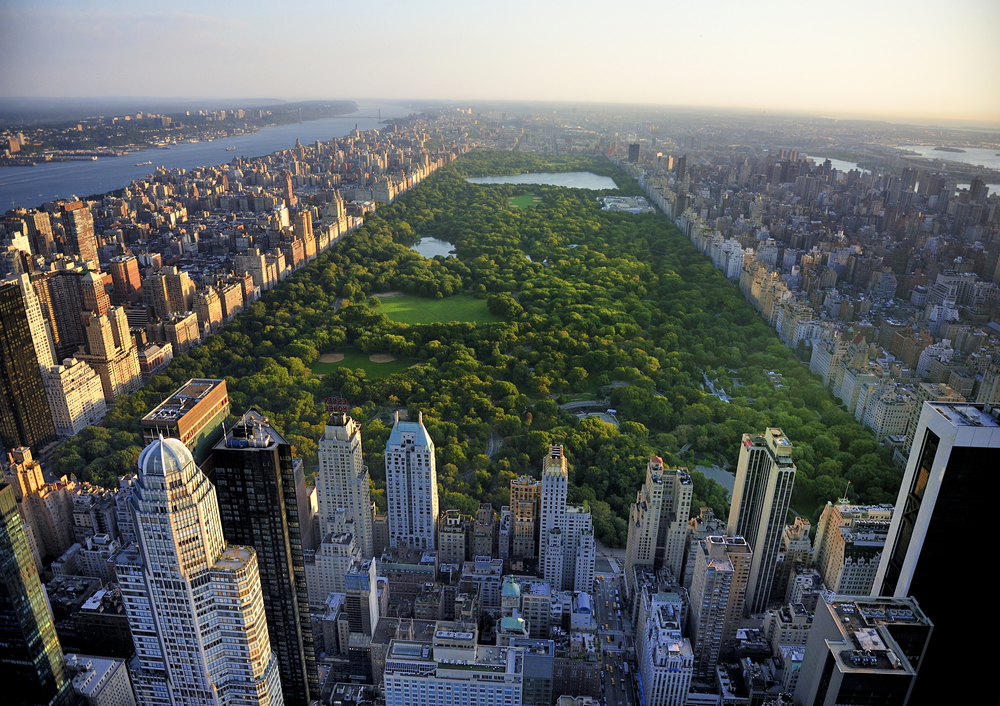 Central Park, New York, late Afternoon. Credit: Shutterstock.com