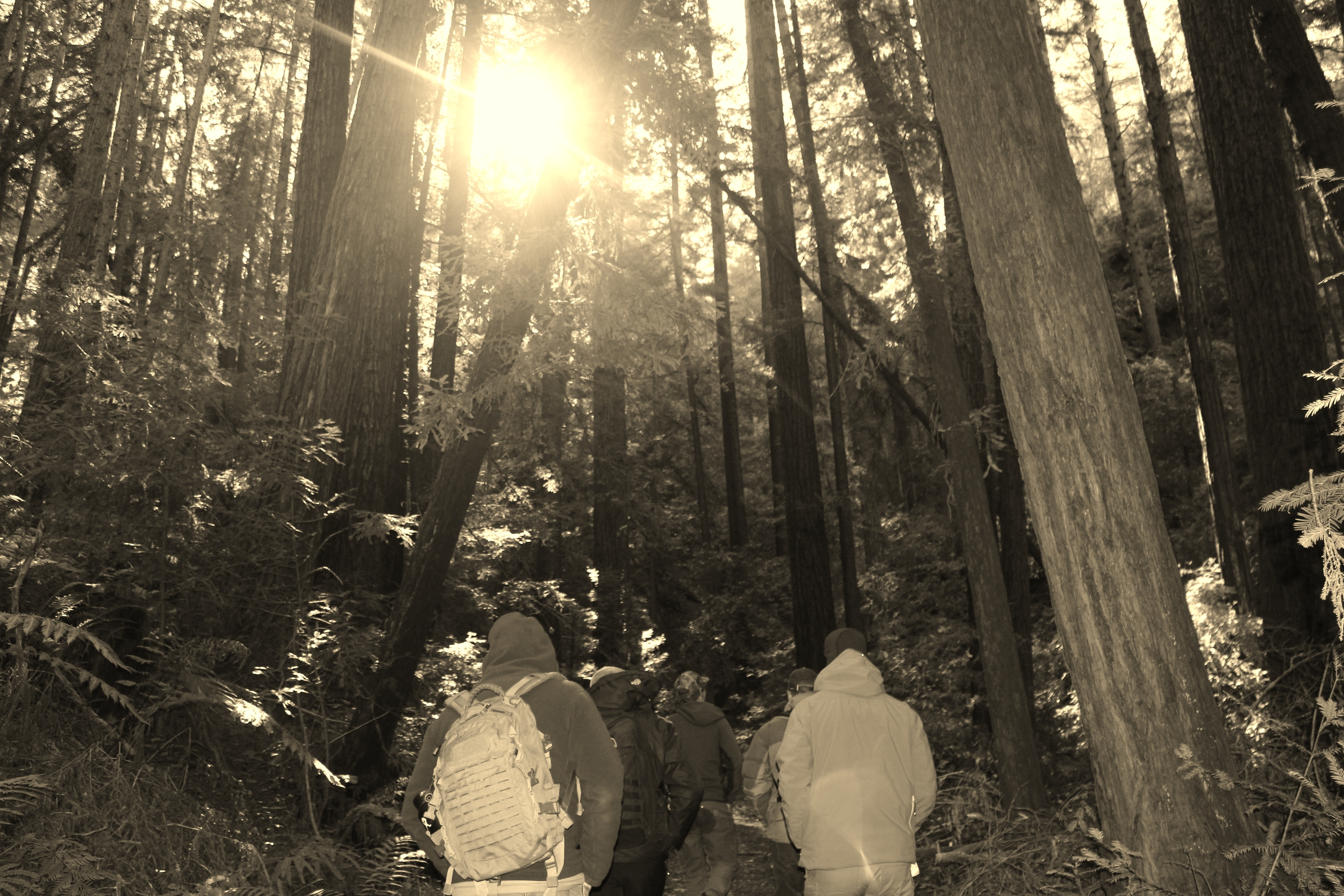 bill eric joe pat Land excursion STG 001 survival training outdoors redwoods IMG_3585.JPG