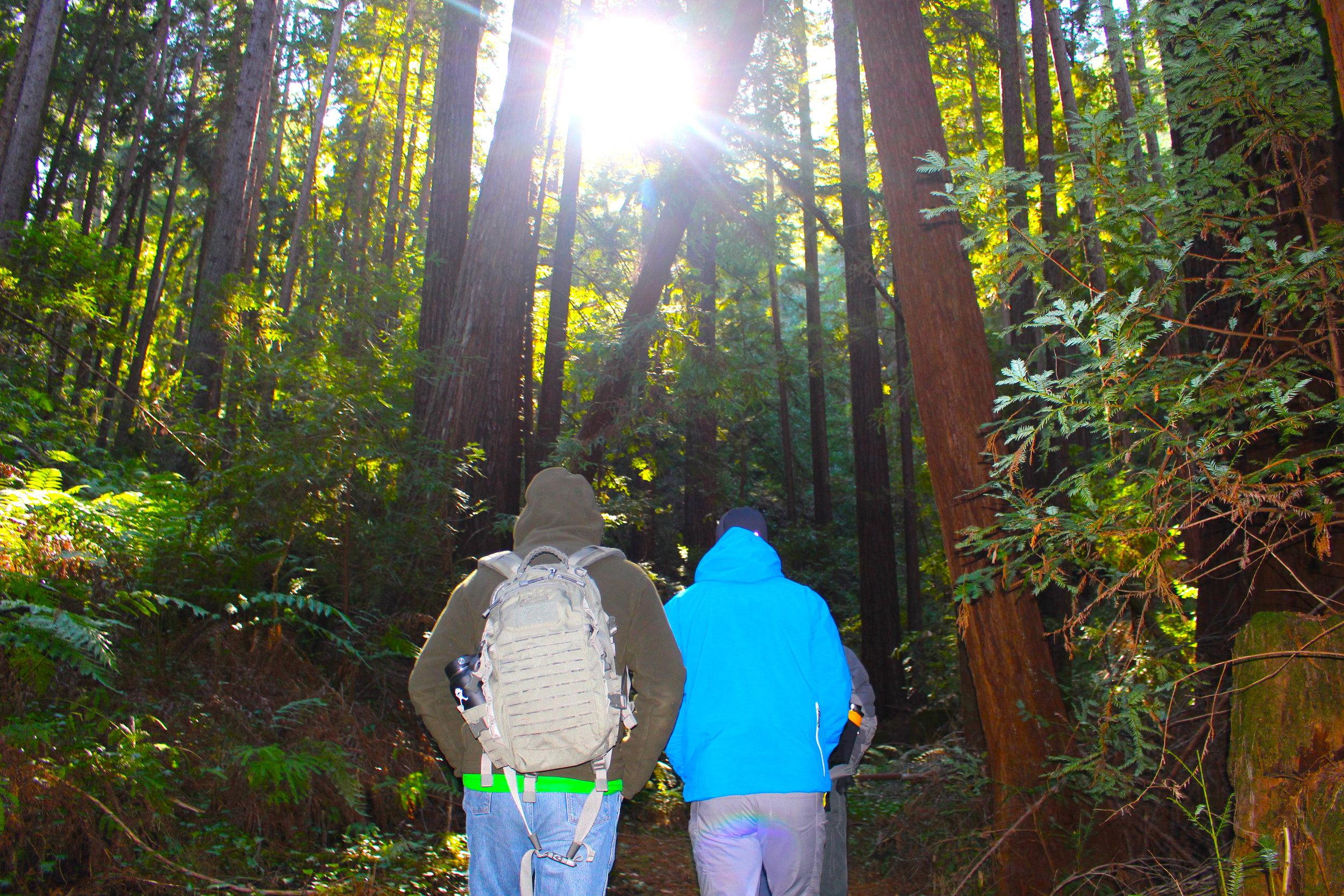 HQ bill eric joe pat Land excursion STG 001 survival training outdoors redwoods IMG_3584 (2).JPG