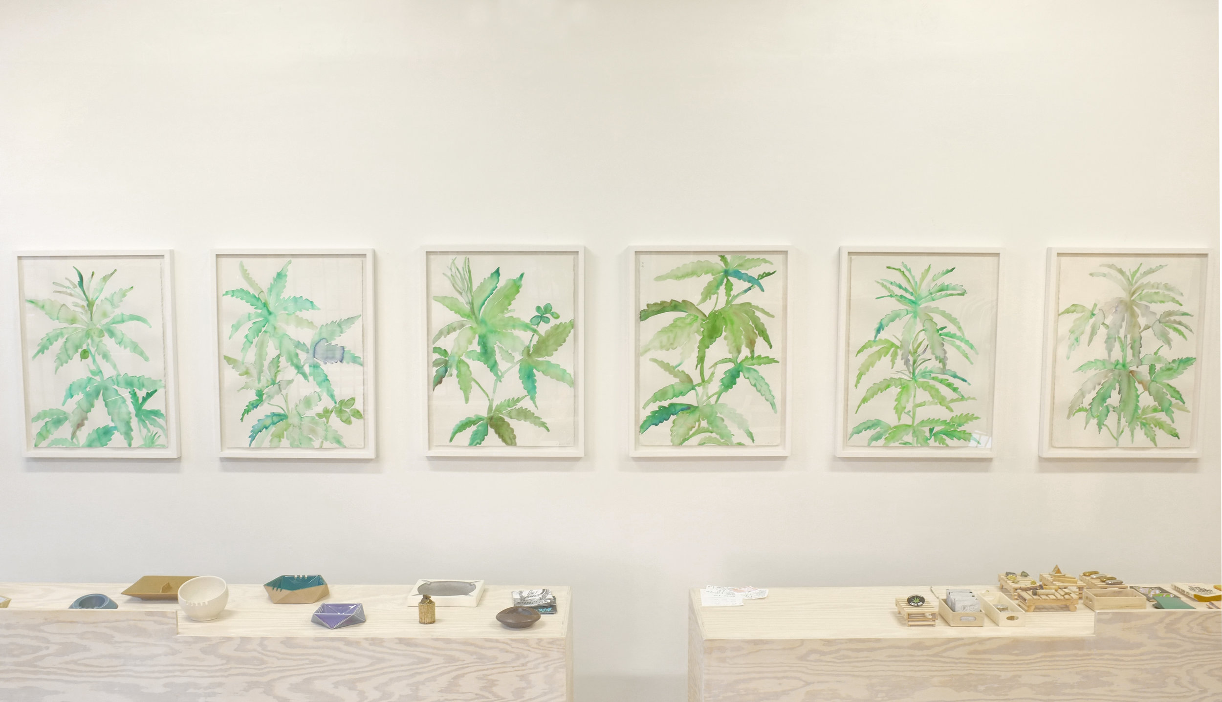 McCarty's paintings adorn our central counter wall.