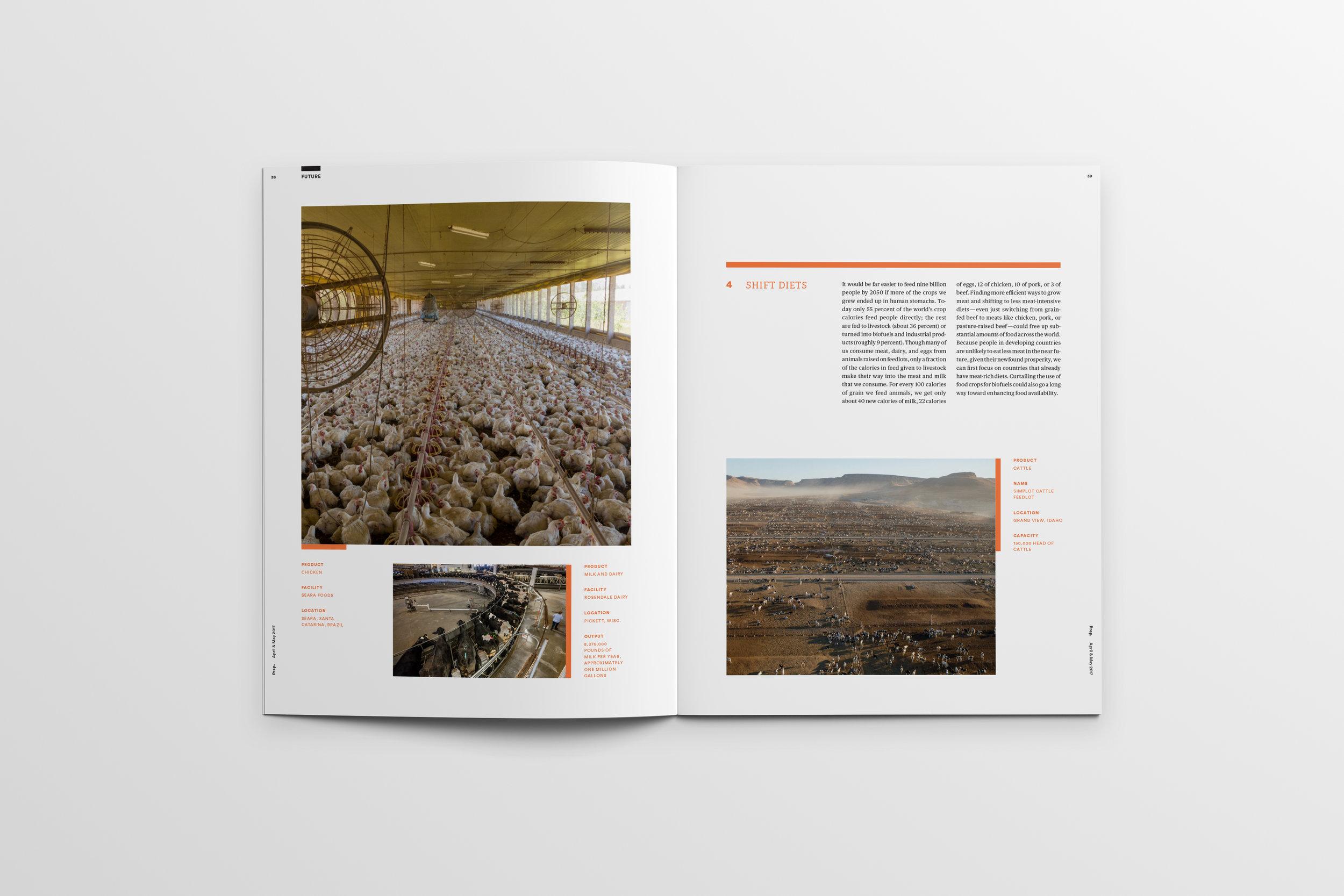 Magazine_Mockup_Pages38-39.jpg
