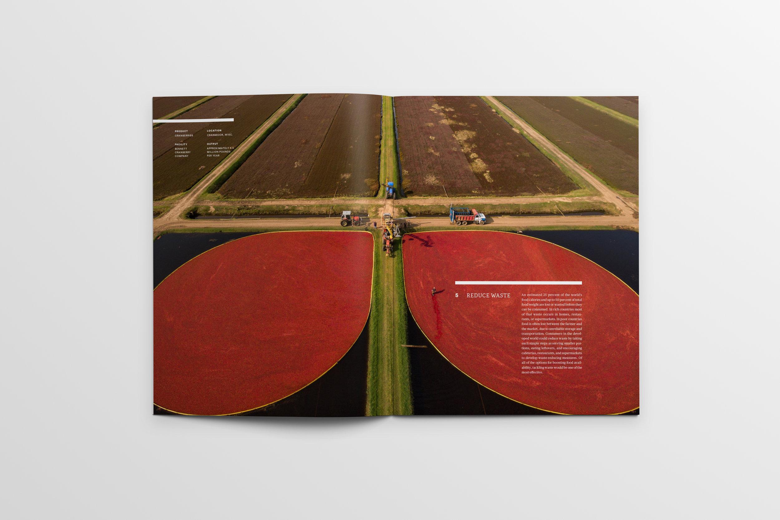 Magazine_Mockup_Pages40-41.jpg