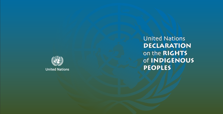United Nations Declaration on the Rights of Indigenous People - DOWNLOAD & READ the PDF version of UNDRIP
