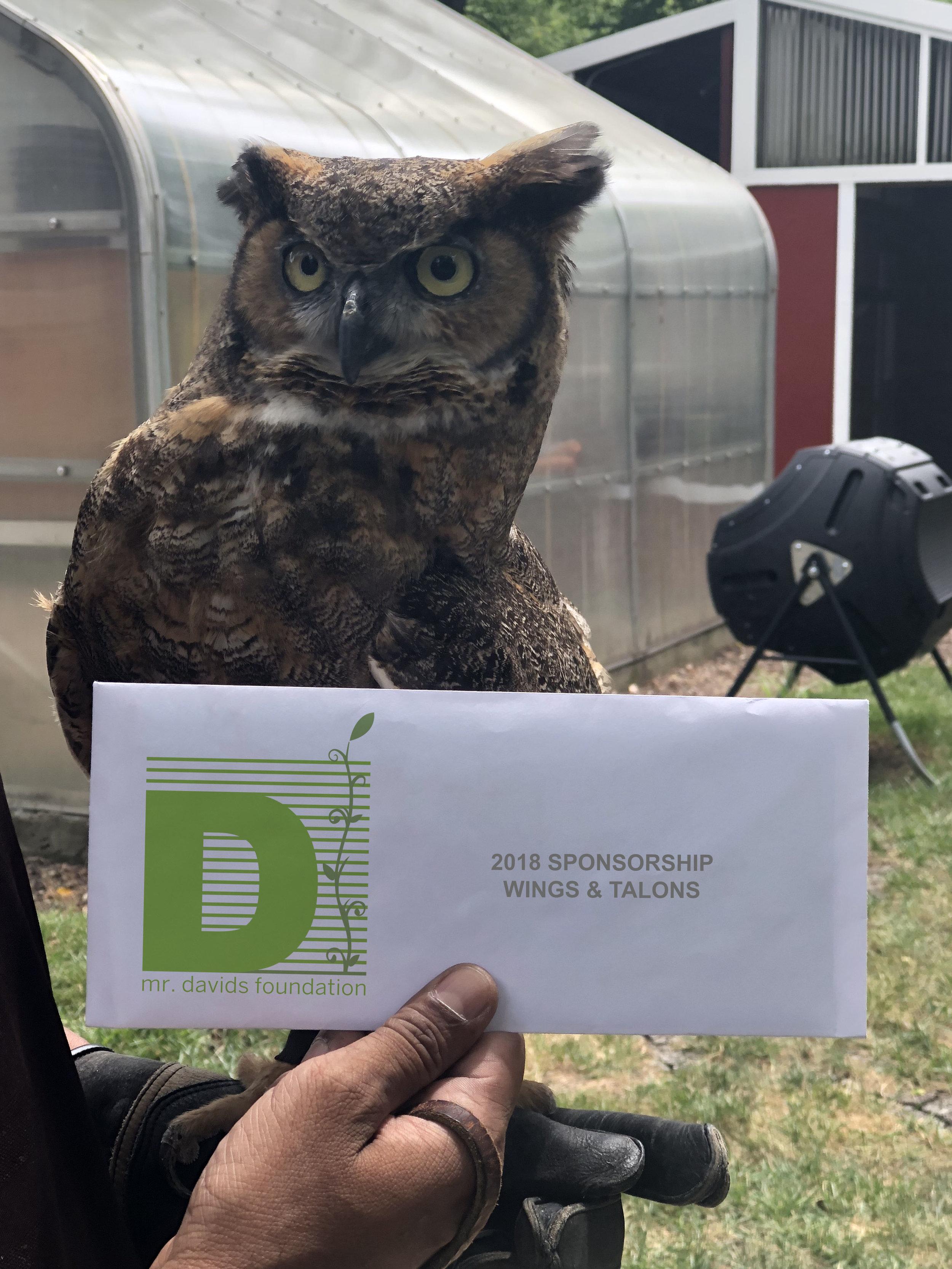 Owl with envelope.jpg