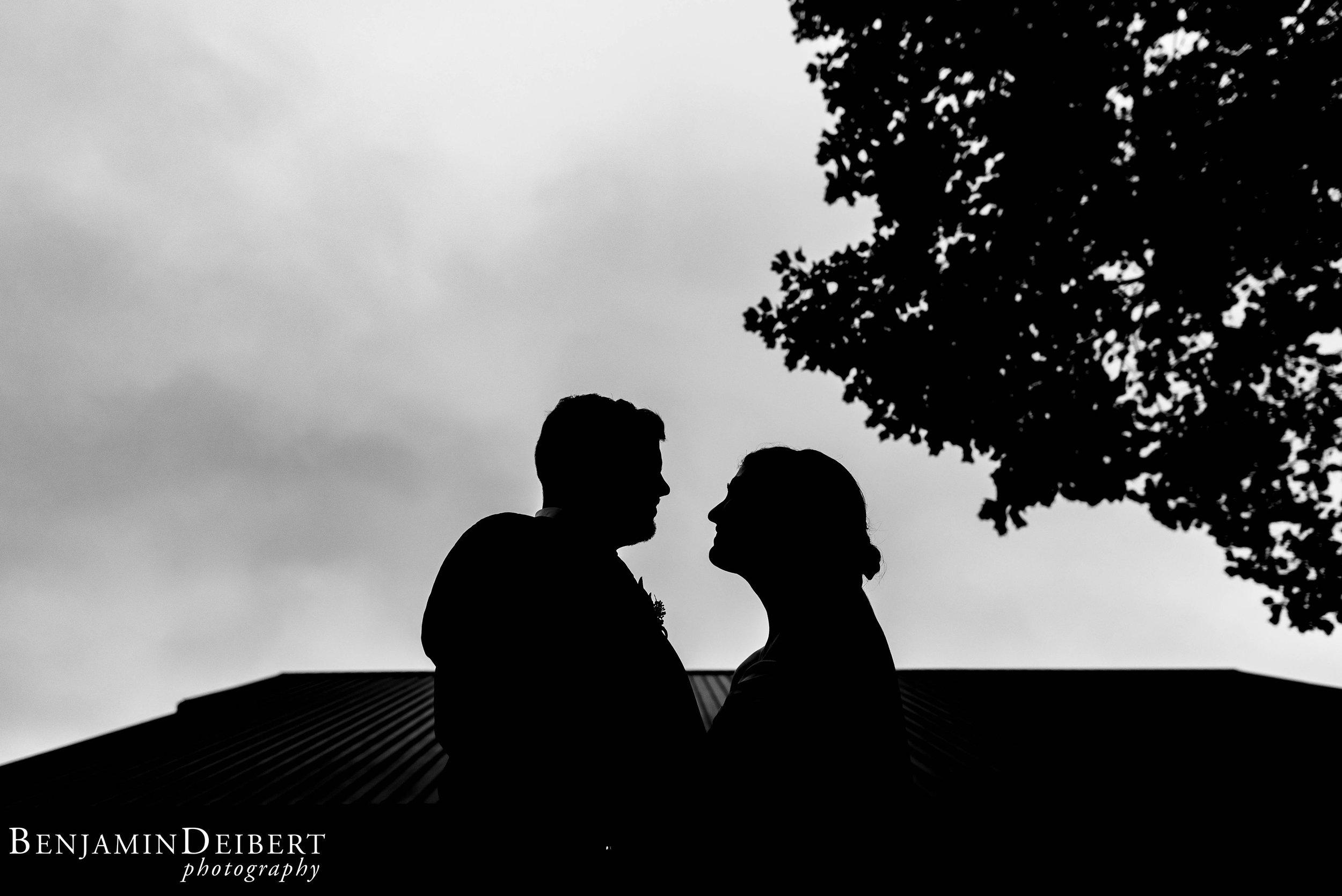 TeghanandChris_BridgemensBallroom_Wedding-77.jpg
