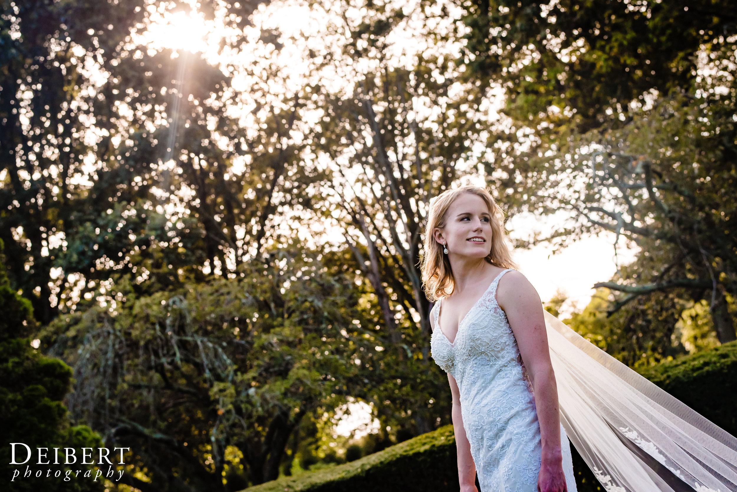 The Carltun Long Island Wedding-59.jpg