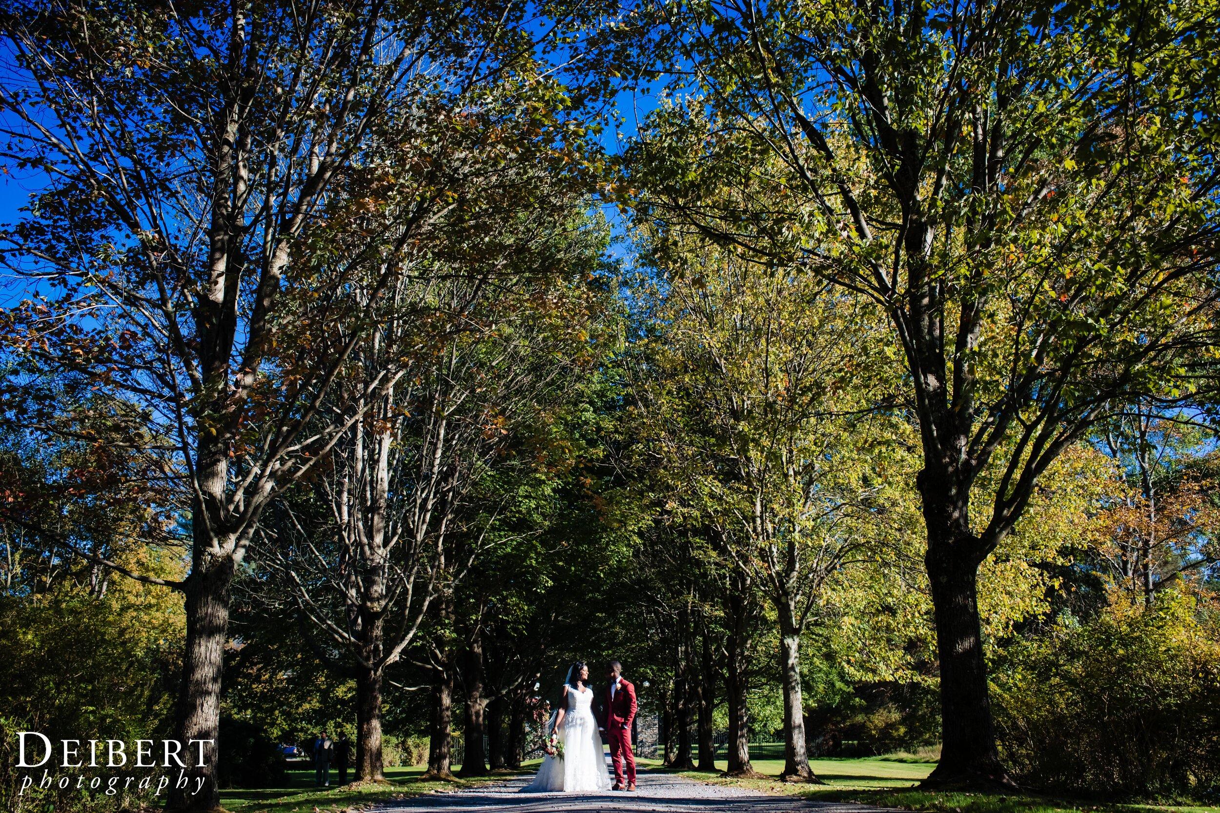 Mansion at Noble Lane Wedding Bethany Pennsylvania-55.jpg