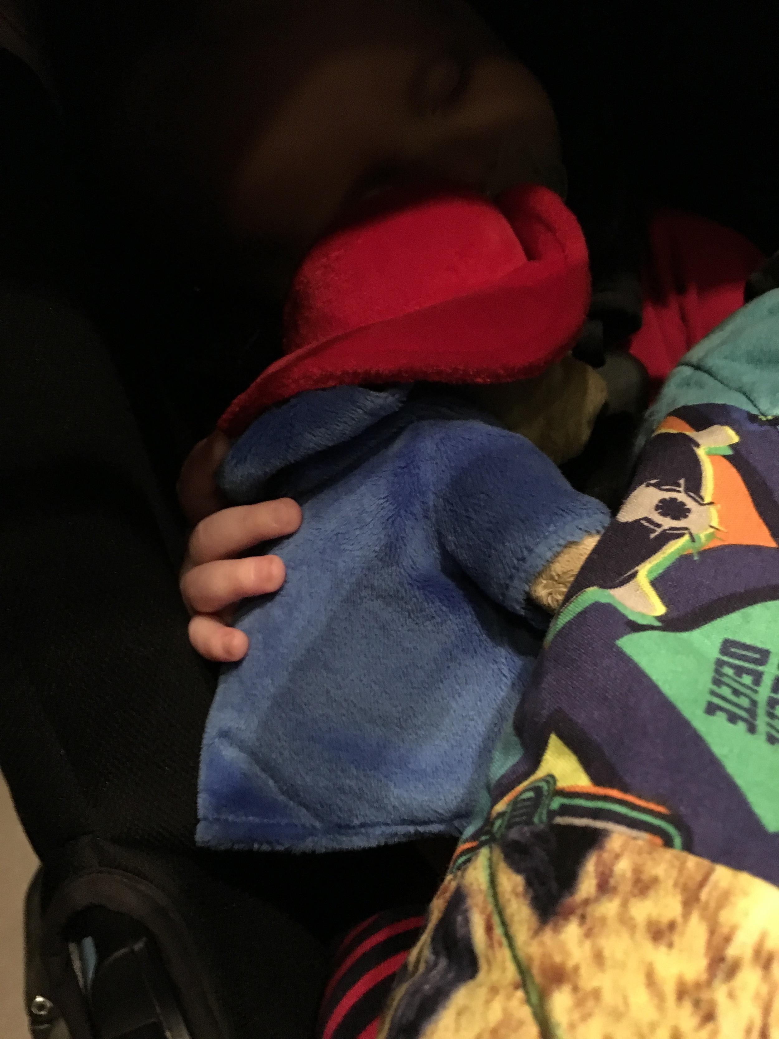 Cuddled with Paddington