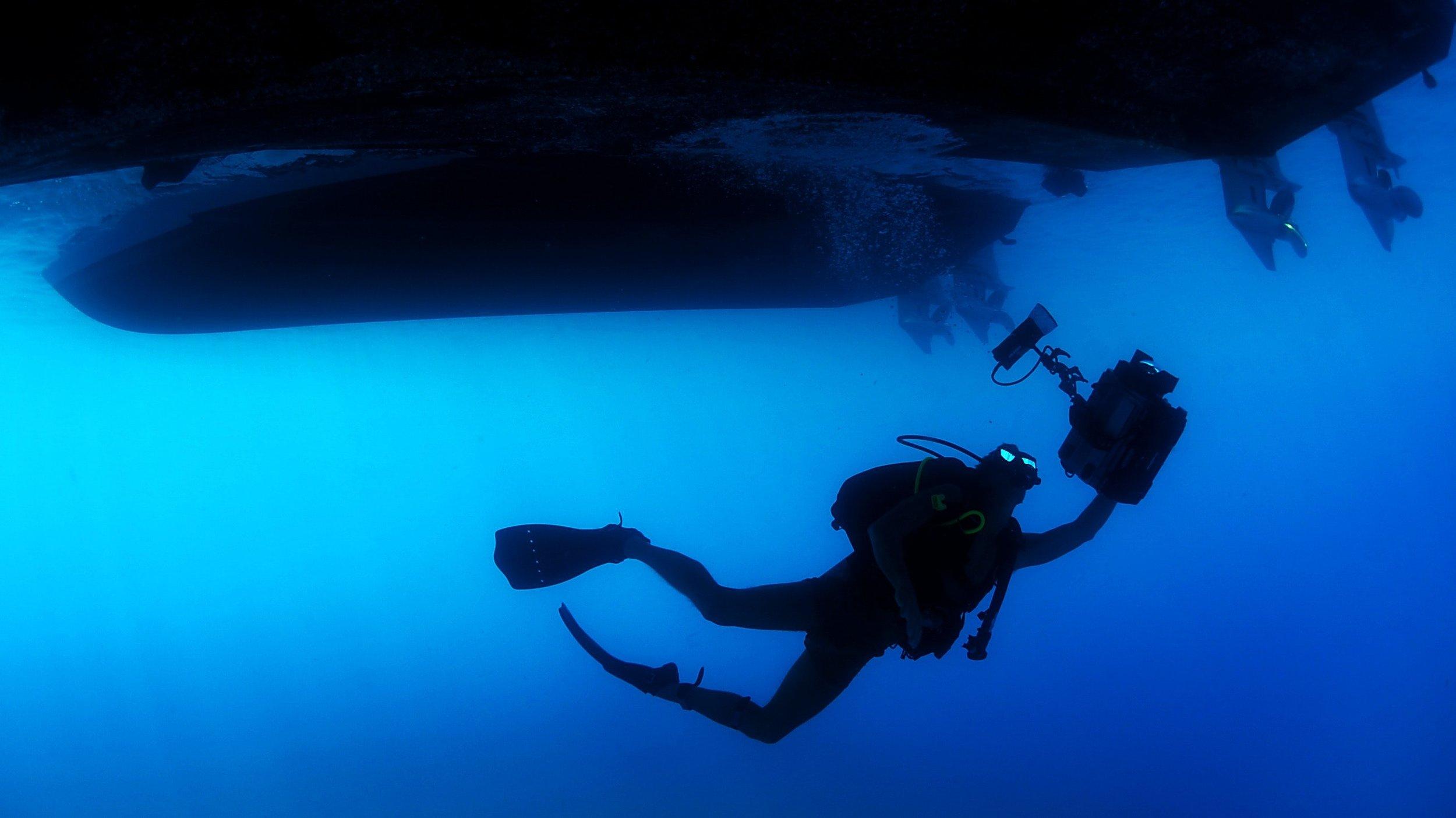 diver-ocean-person-71276.jpg