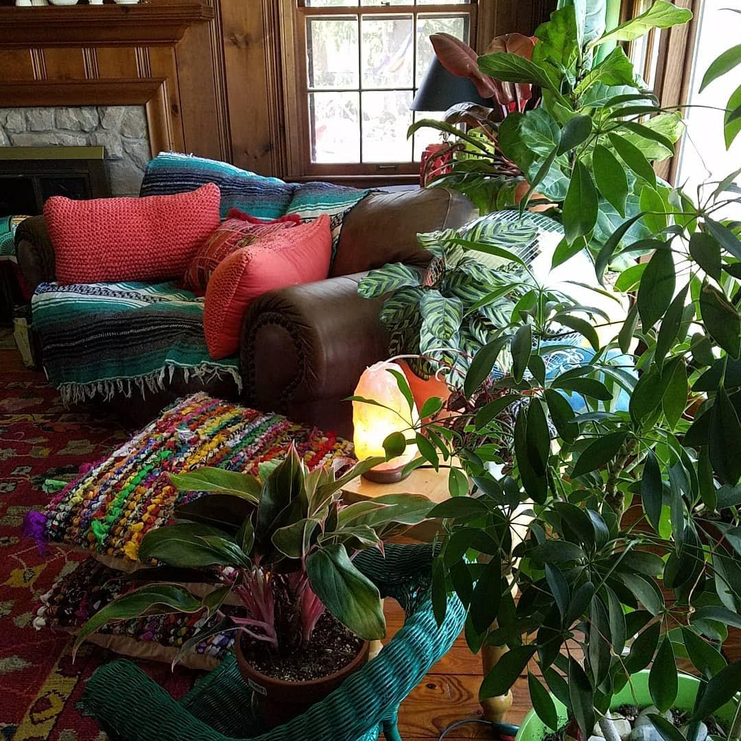Vicki's colorful home.