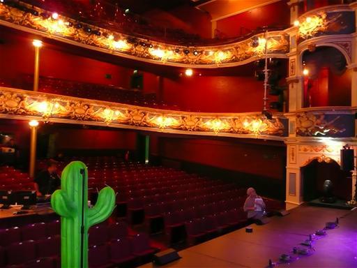 Auditorium (and Cactus)
