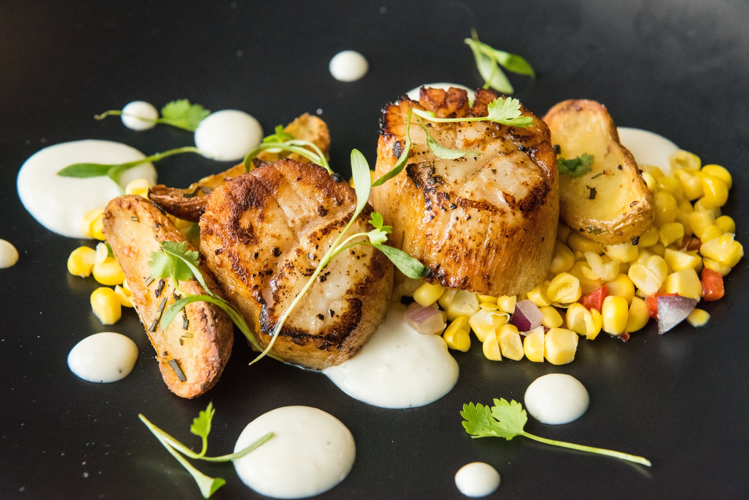 Seared Diver Scallops entree available at Thirsty Mermaid