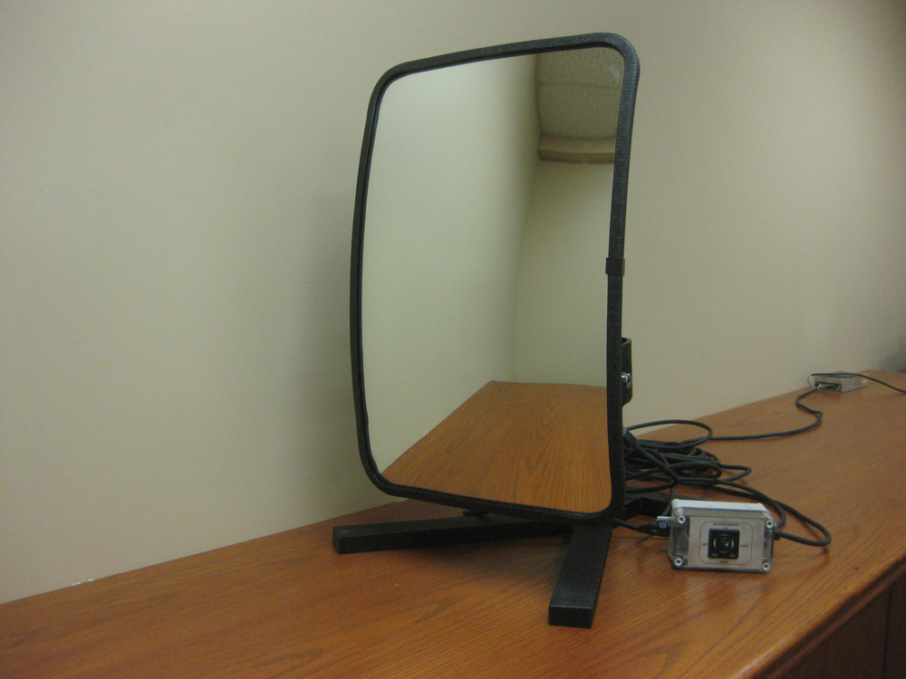 Silverback Powered Mirror