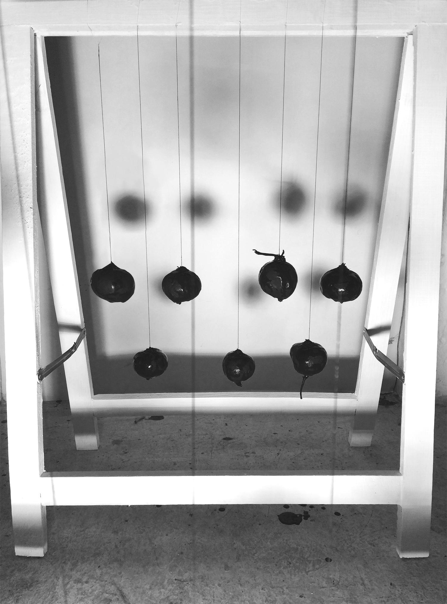 Hanging Beets_web.jpg