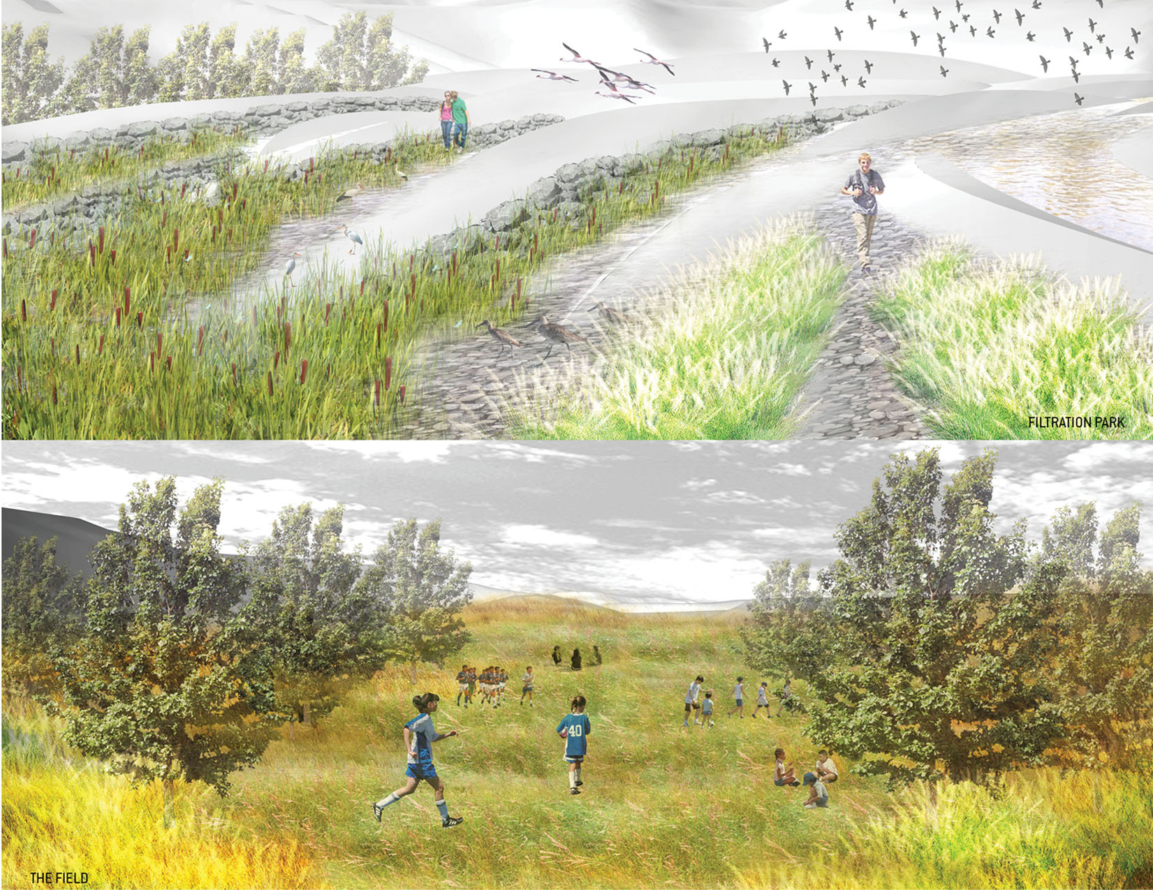 TINA CHEE landscape studio_METABOLICSCAPES_field__.jpg