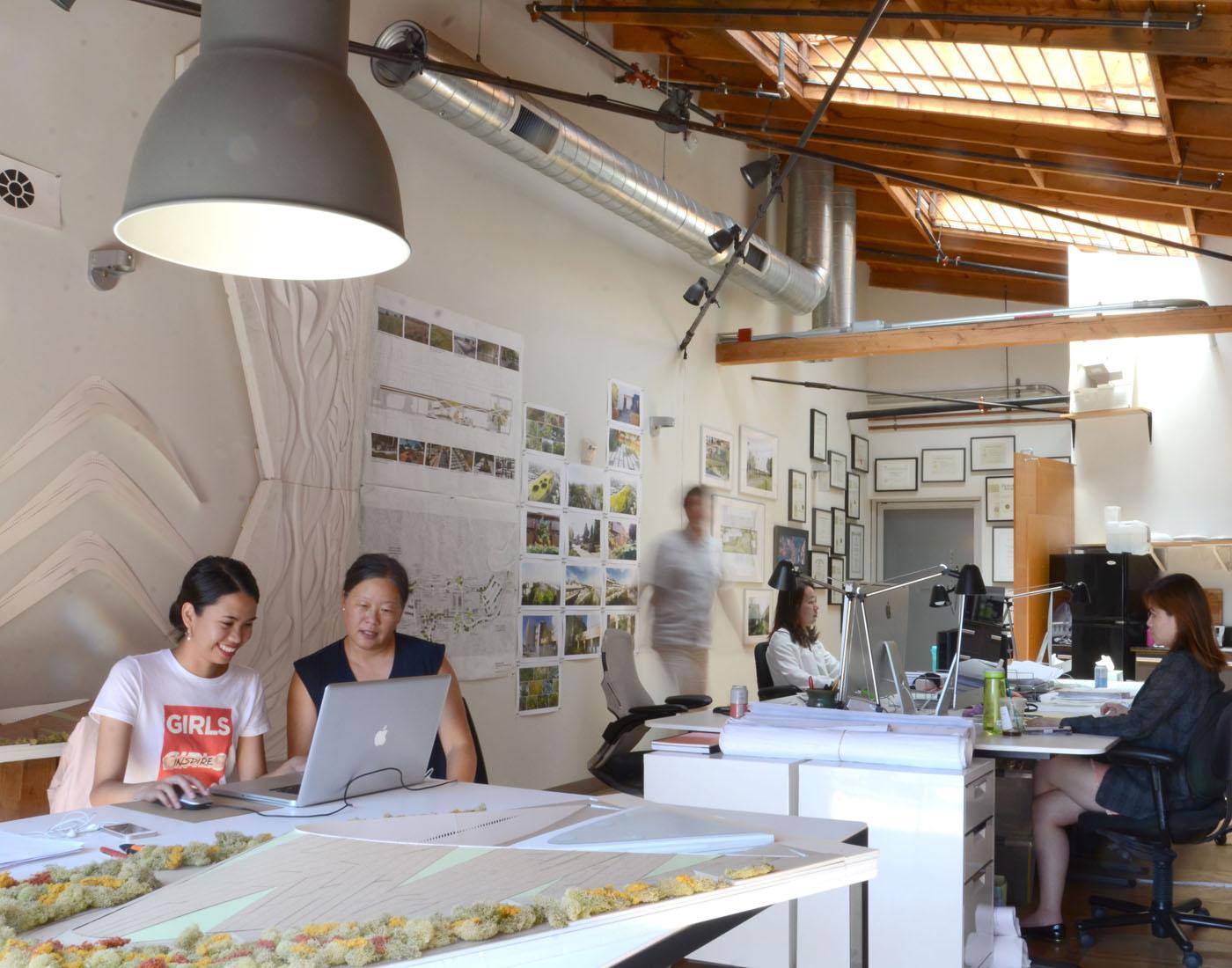 TINA CHEE landscape studio-02-.jpg