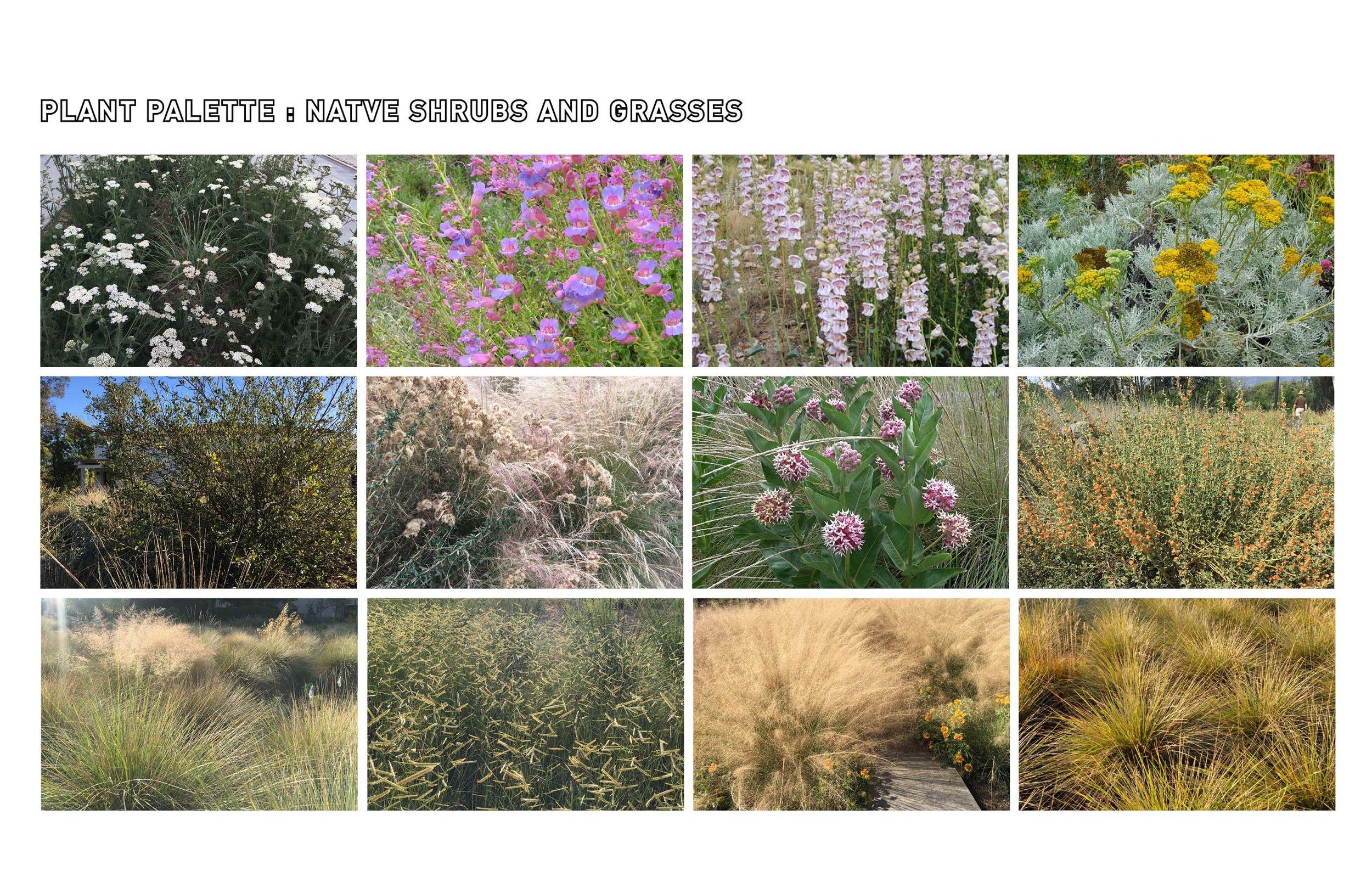 TINA CHEE landscape studio_FTP27.jpg
