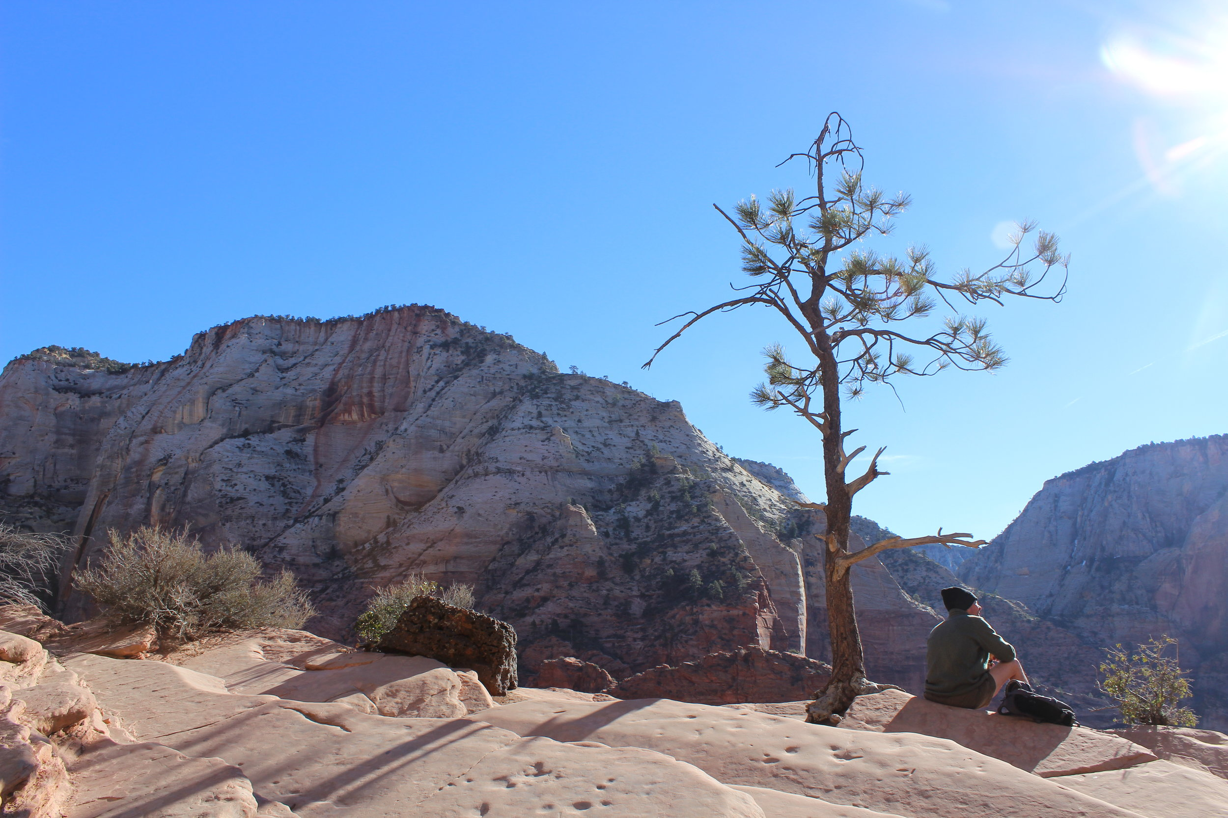 Park Ranger relaxes as he takes in the views of Zion National Park