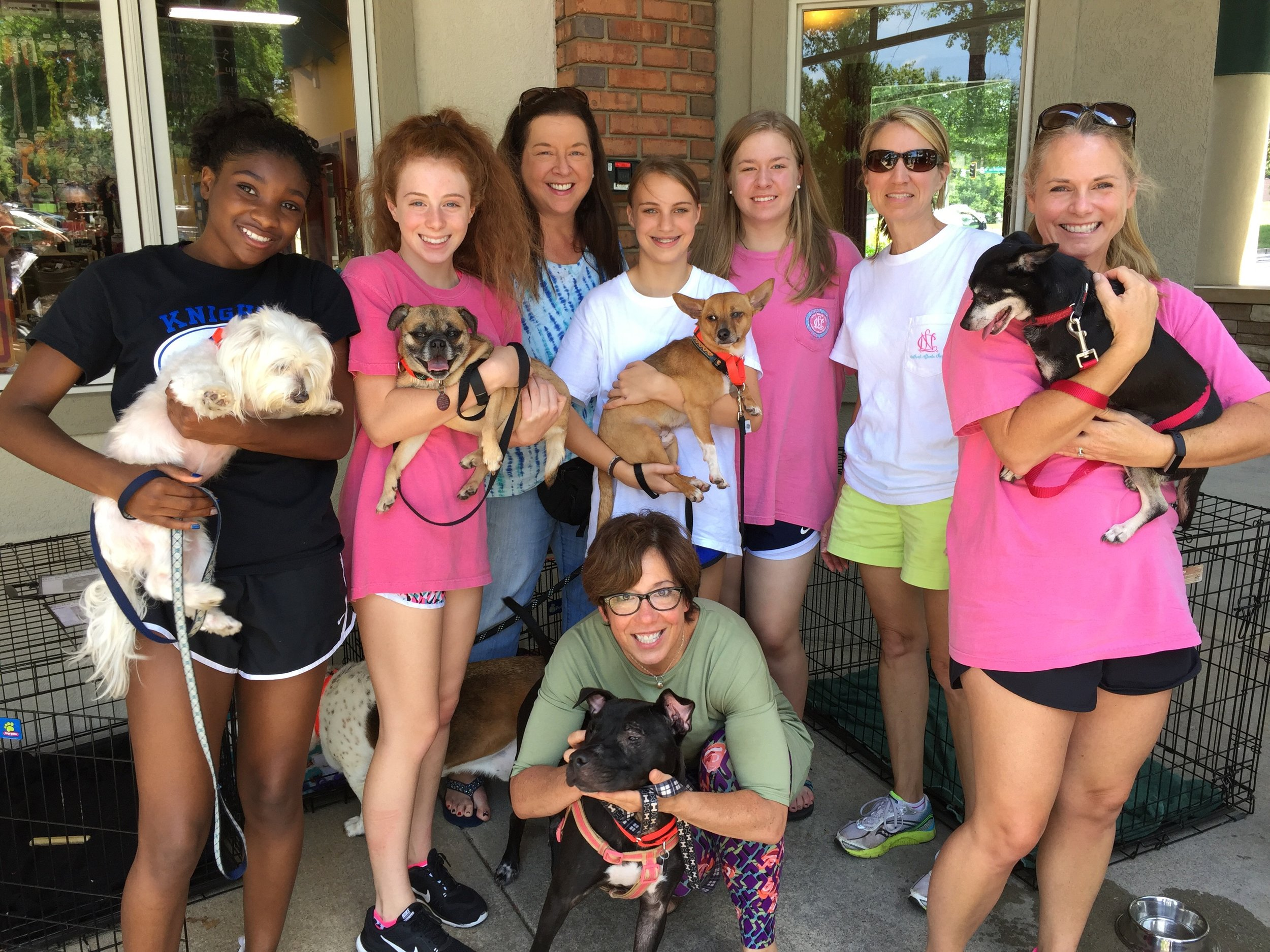 Volunteering on vacation can be a furry good time, especially at Furkids in Atlanta