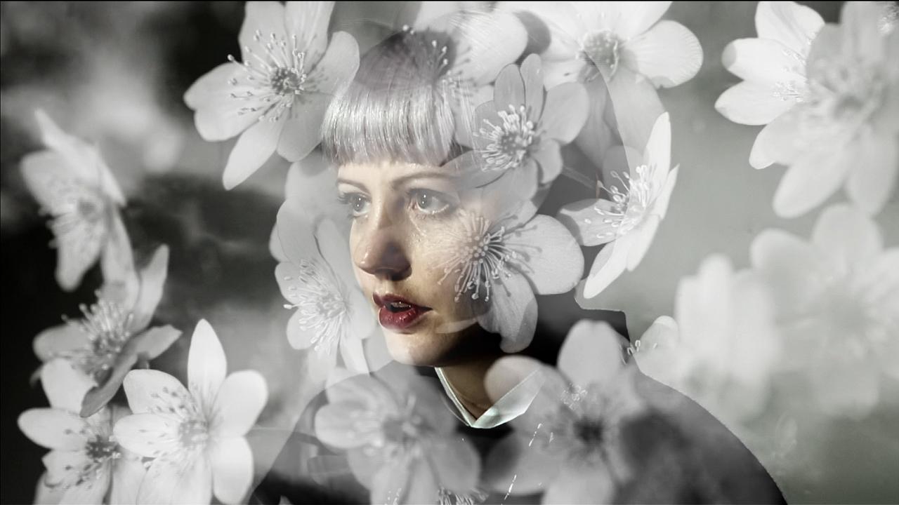 miska-mandic_forest-06.jpg