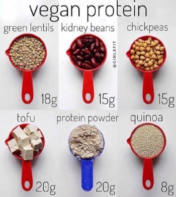 veganprotein.jpg