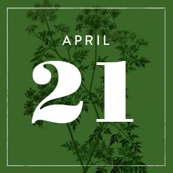 APRI21.png