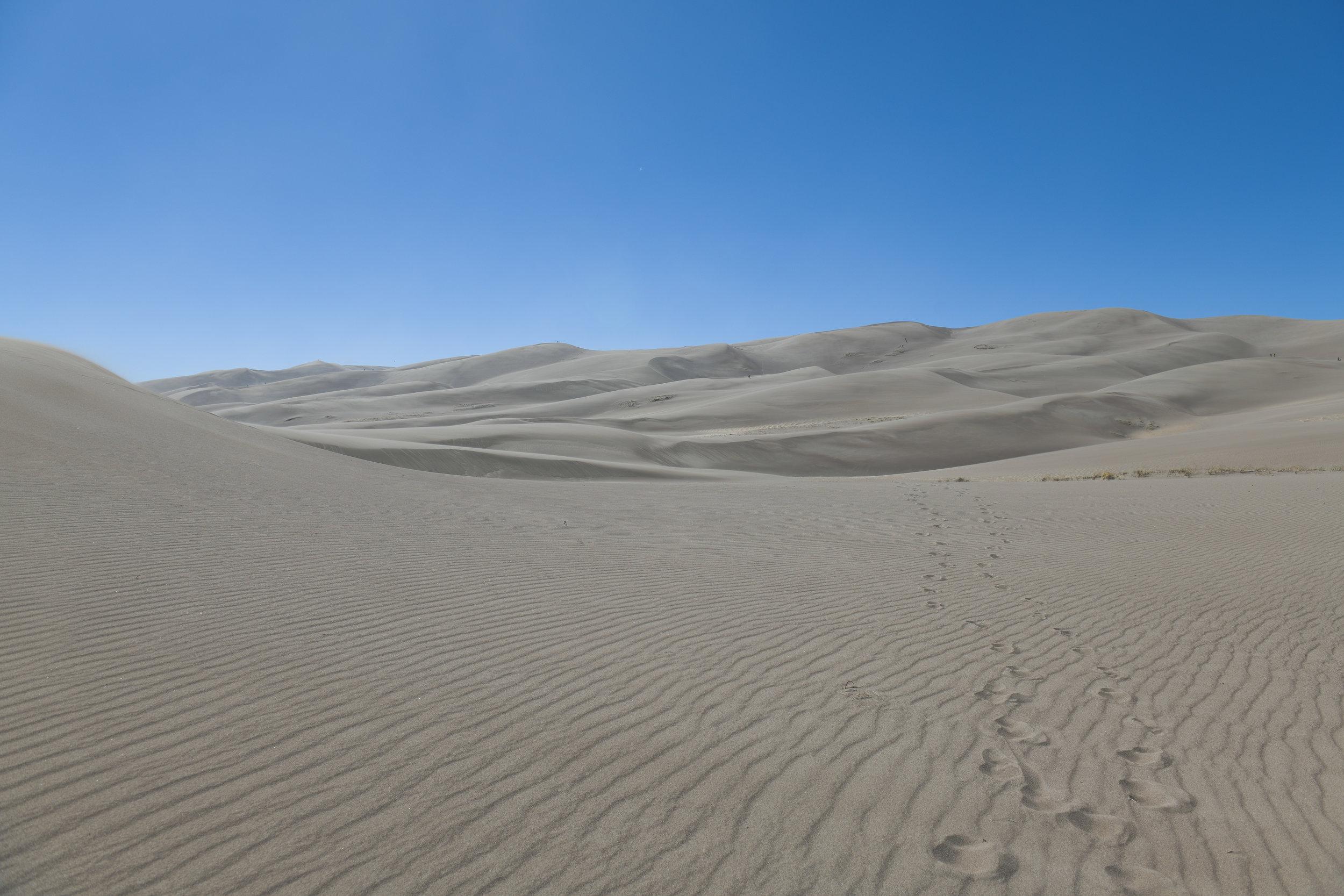 05242019_bruce_sand dunes_0023.jpg