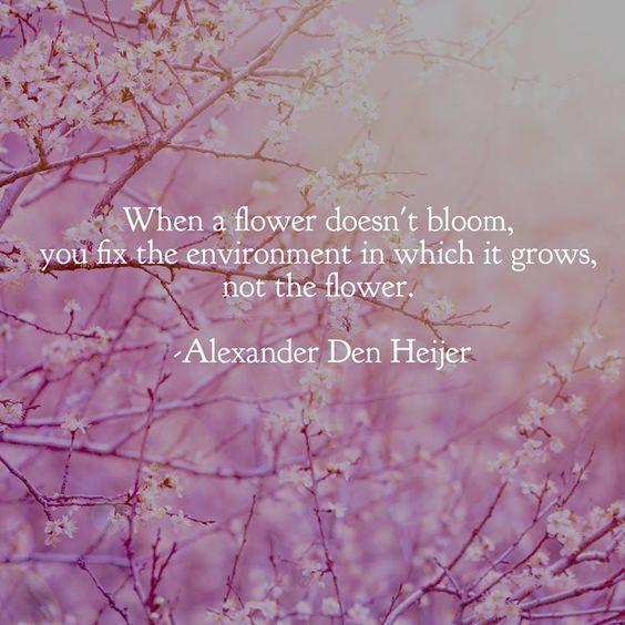 When a Flower....jpg