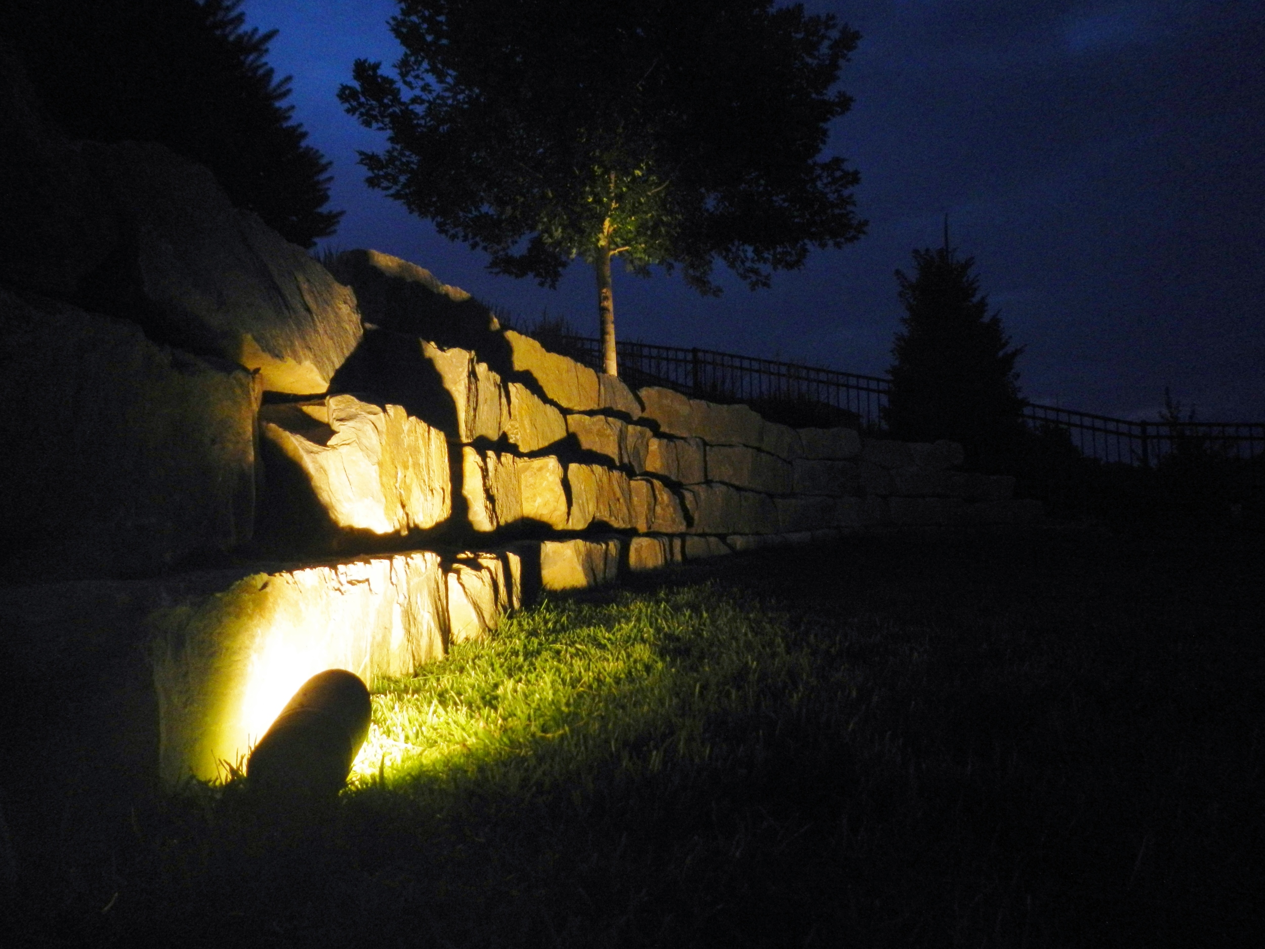 wall vangilder.JPG