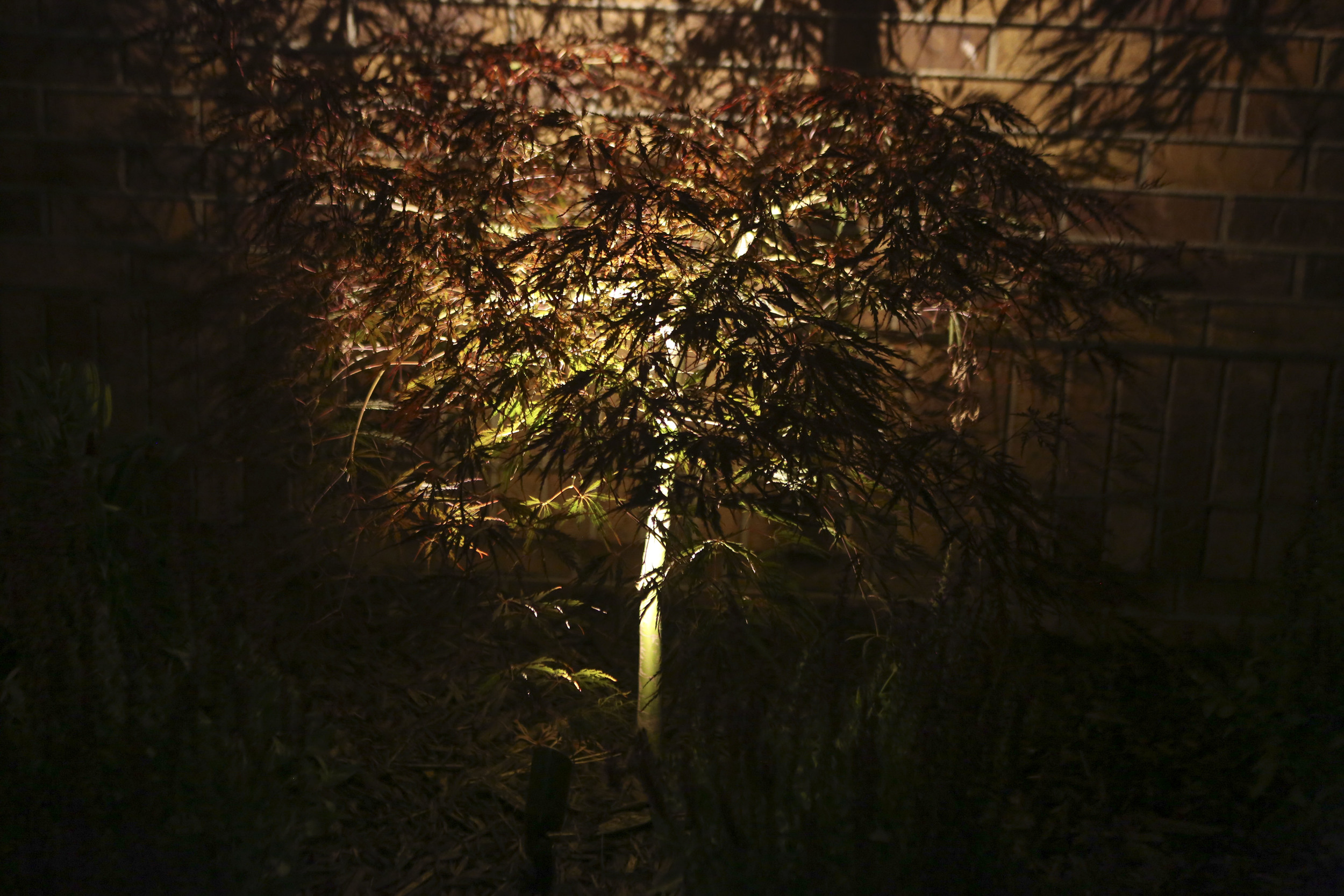 nightscapes_51.JPG