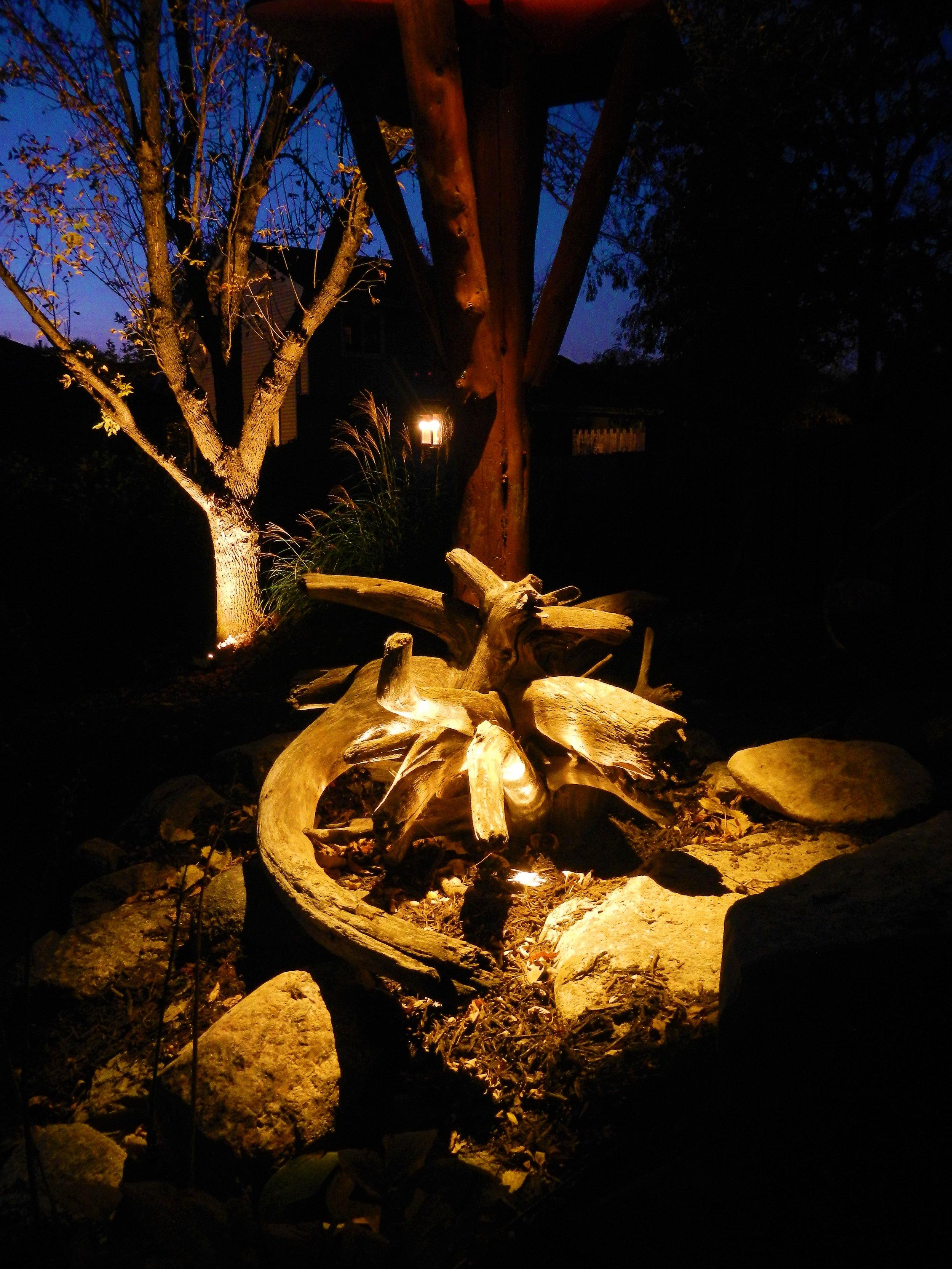 Moon-lit Driftwood Nebraska.jpg