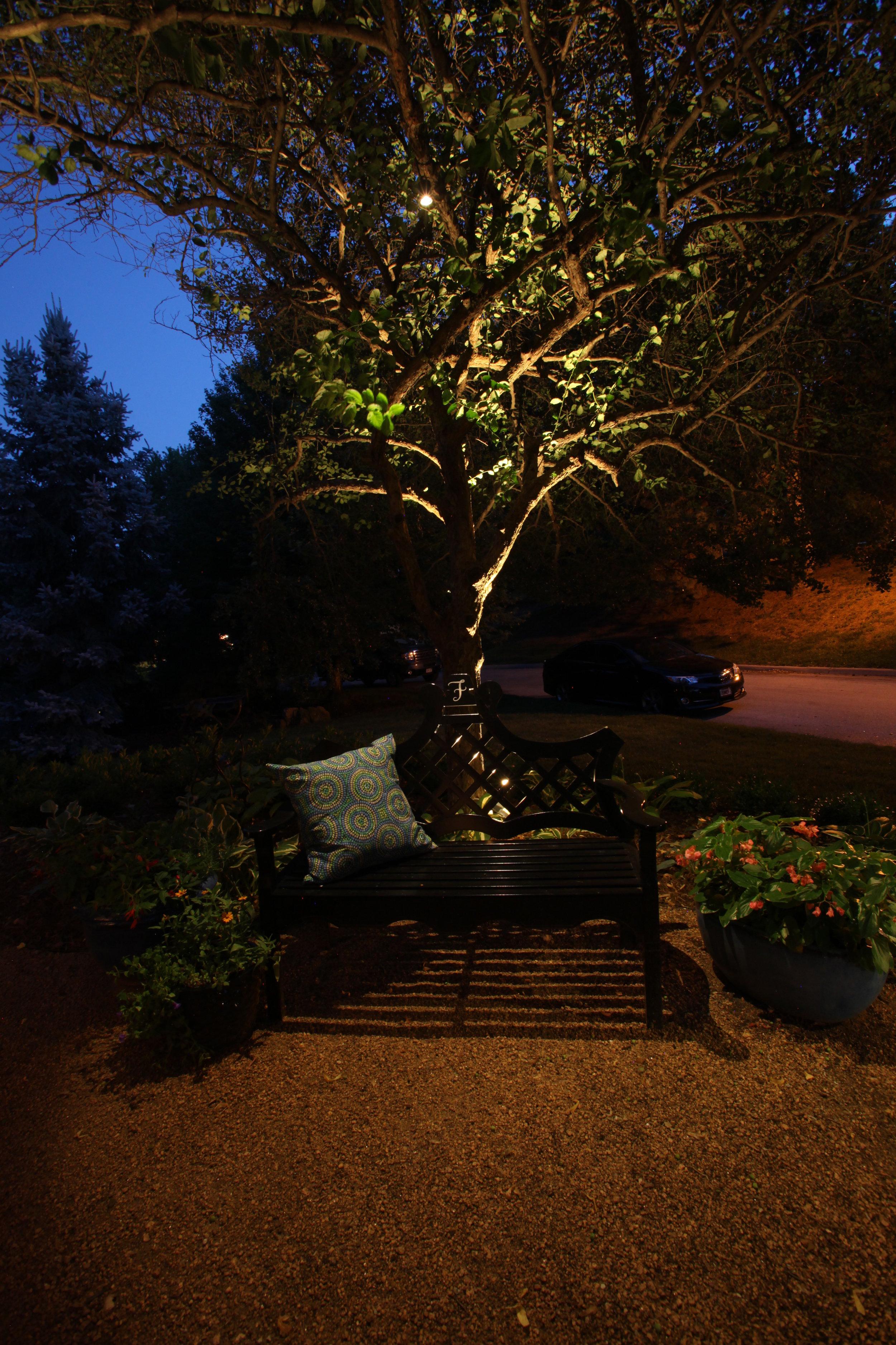 Moon Lighting Bench Omaha.jpg