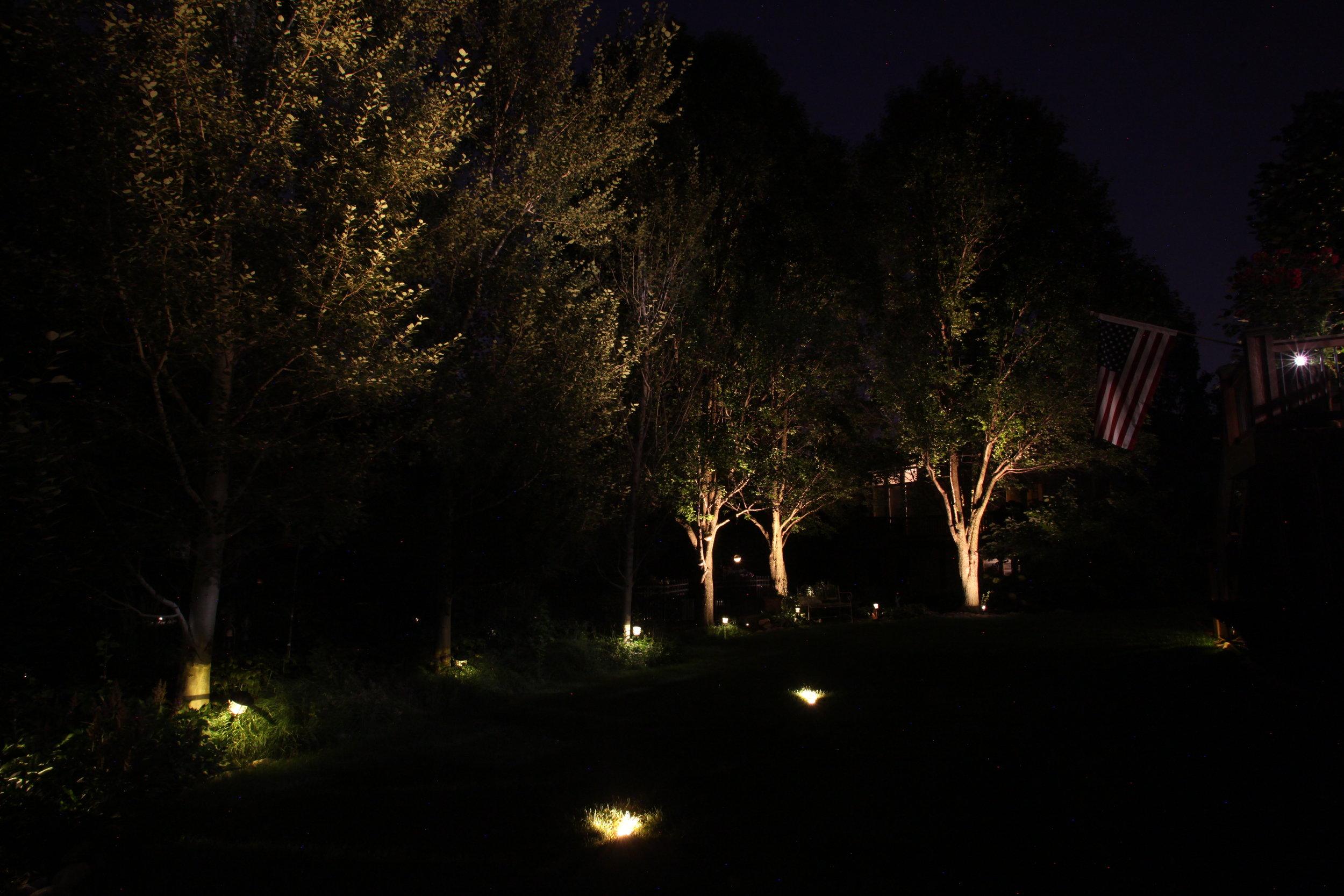 Up-Lighting Trees in Nebraska backyard.jpg