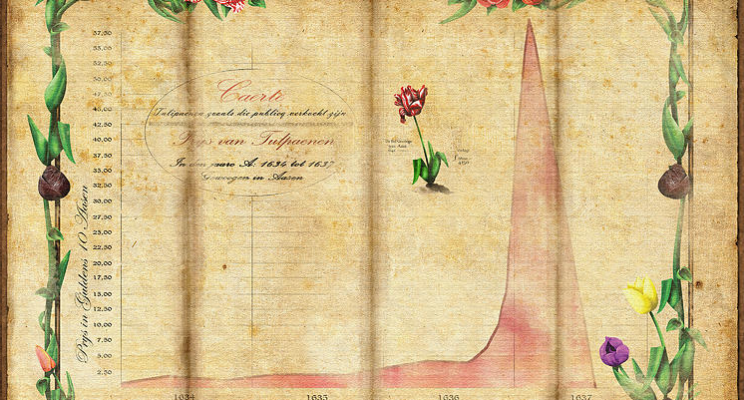 A graph showing the price of 1 tulip bulb over a 4 year timespan (1634-1637).