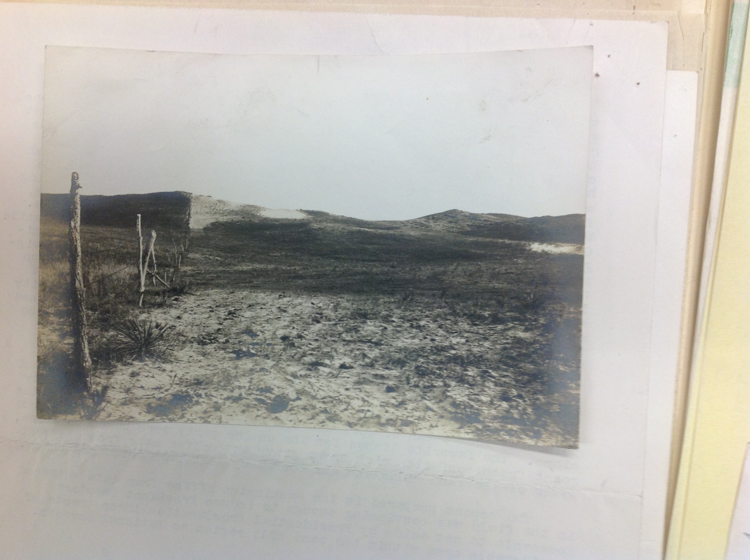 """The condition of the Nebraska Sand Hill Country as we found it in 1901. Over grazing the range was a concern at that time. Charles A. Scott.""  From the narrative of Charles A. Scott. Old Timers Collection. Gifford Pinchot Collection. Library of Congress. Manuscript Division."