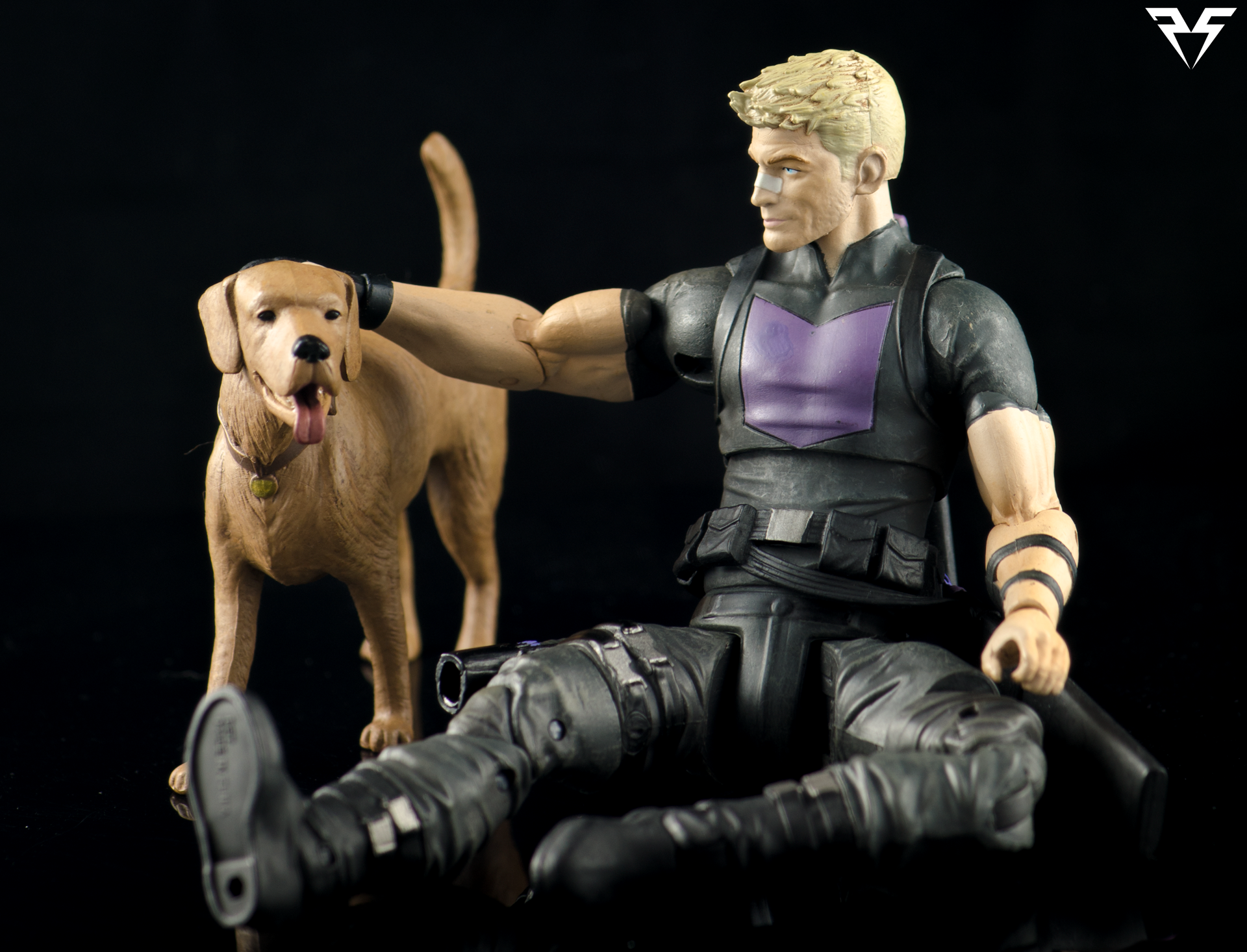 Hawkeye-Pet.png