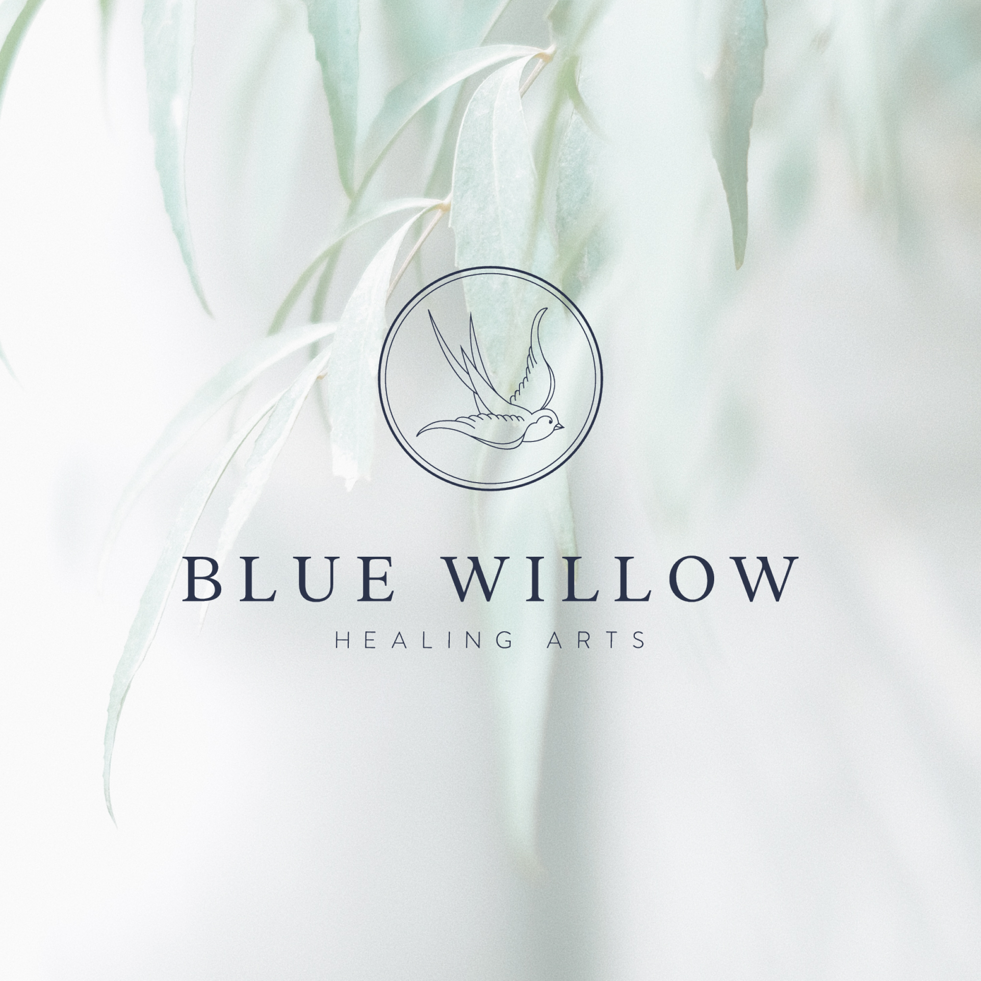 Brand identity design for Blue Willow Healing Arts, a Massachusetts-based acupuncture and wellness practice, by Alexa B. Creative & Design