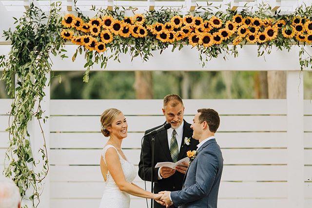 Sunflower obsessed 🌻😍 . . .📸 @rachelburkhart