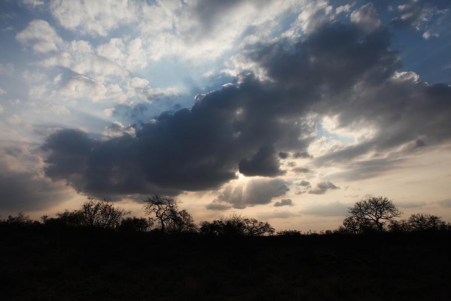 SAfrica_032.jpg