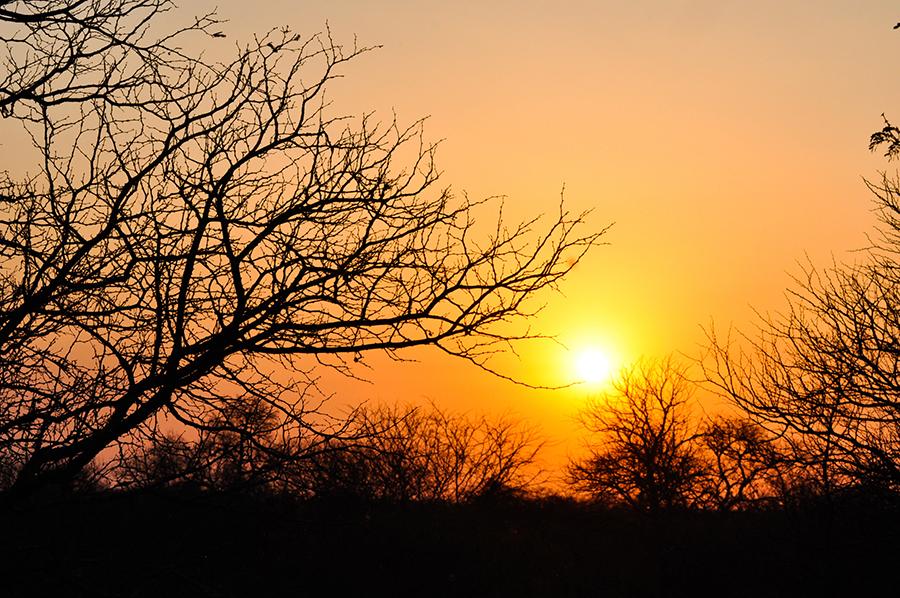 SAfrica_038.jpg